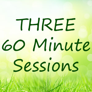 three-60-minute-One-on-One-coaching-sessions