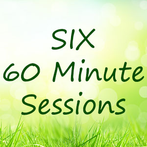 Six-60-minute-One-on-One-coaching-sessions