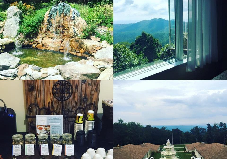 Yoga, Meditation, & Mindfulness Retreat