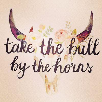 bull-by-the-horns