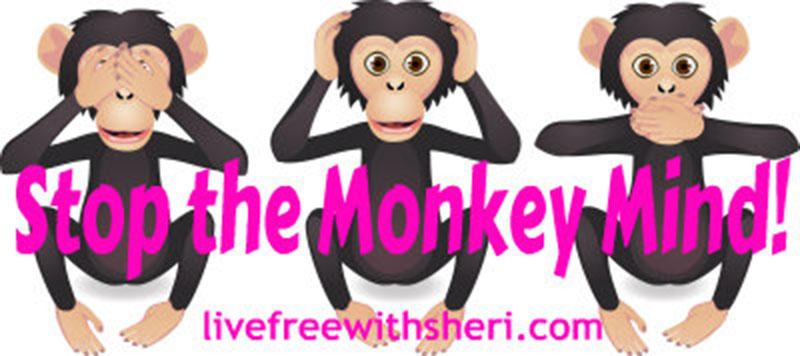 Stop the Monkey Mind & Meditate